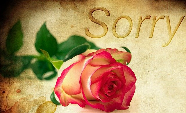 My apology to my husband